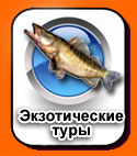 batton_exoticекзотические тыры по канаде и америке