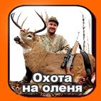 Охота на оленя в Канаде