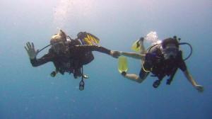 Скуба Дайвинг (подводное плавание с аквалангом) во Флориде и путешествие в Новый Орлеан